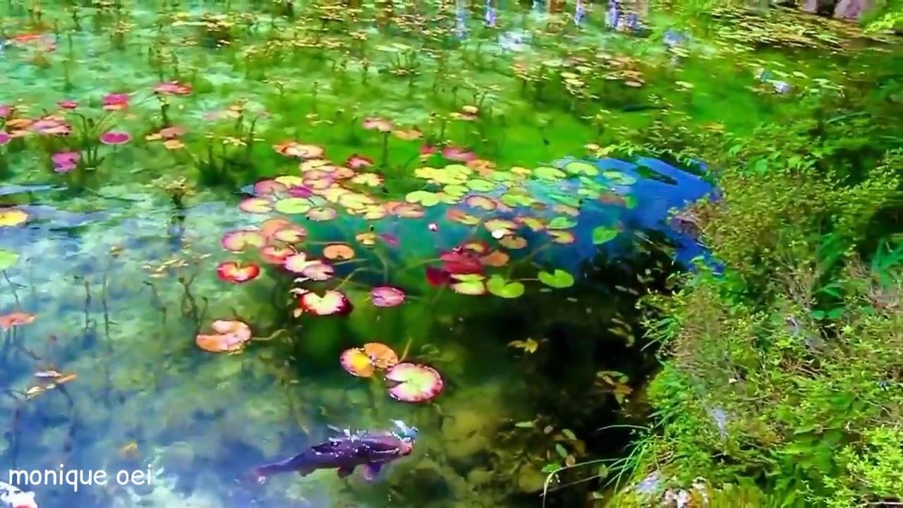 Lago de Monet by Monique Oei