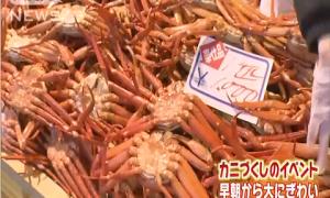 Crab Event at Toyama Ken
