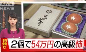 540,000 yen for 2 pieces kaki?