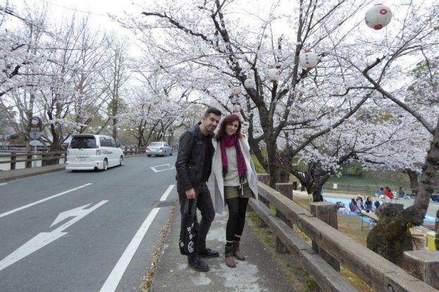 Lugares secretos de Japón en los que disfrutar de los cerezos (sakura) en flor: los alrededores del castillo de Kumamoto