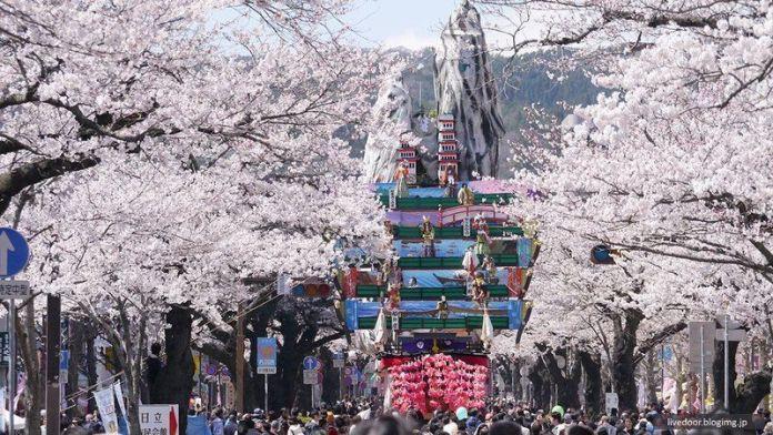 Festivales de Japón: el Hitachi Sakura Matsuri (日立さくらまつり) o Festival de los Cerezos, celebrado en Hitachi (Ibaraki) en abril