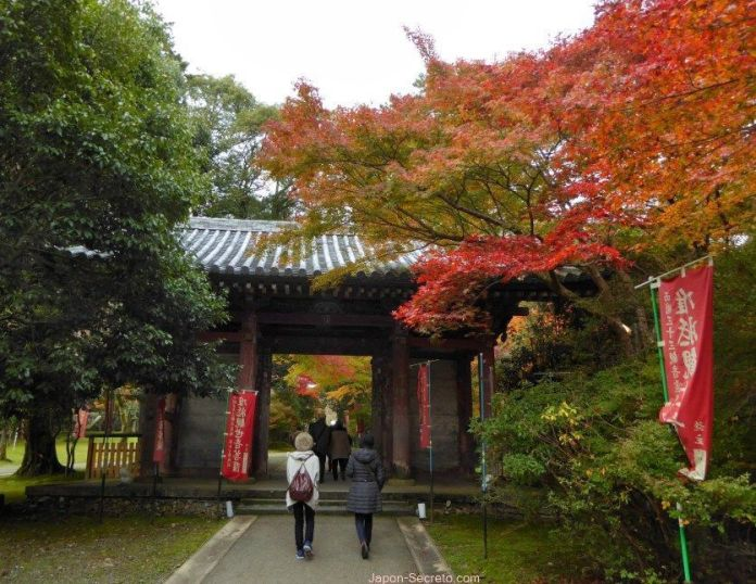 Jardines del templo Daigoji (Kioto) en otoño