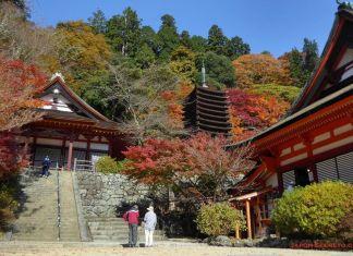 Santuario Tanzan (Sakurai, prefectura de Nara). Perfecto para el momiji