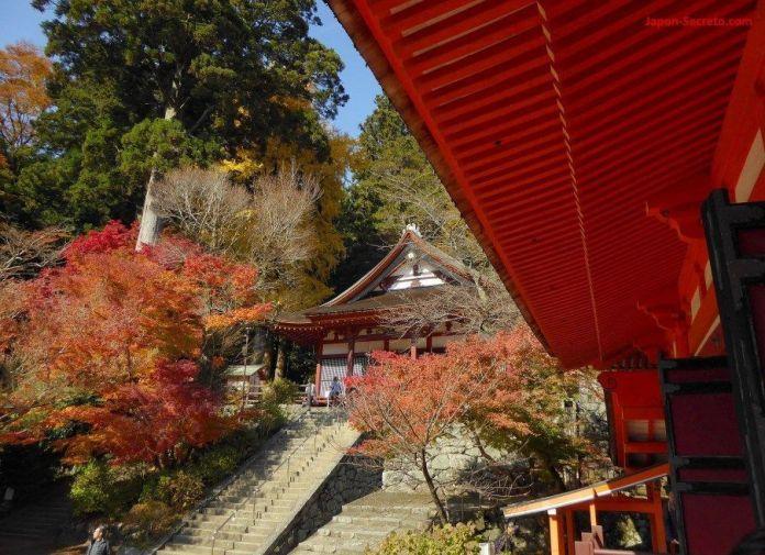 "Momiji en el santuario Tanzan (""Tanzanjinja"", 談山神社) en Sakurai (prefectura de Nara)"