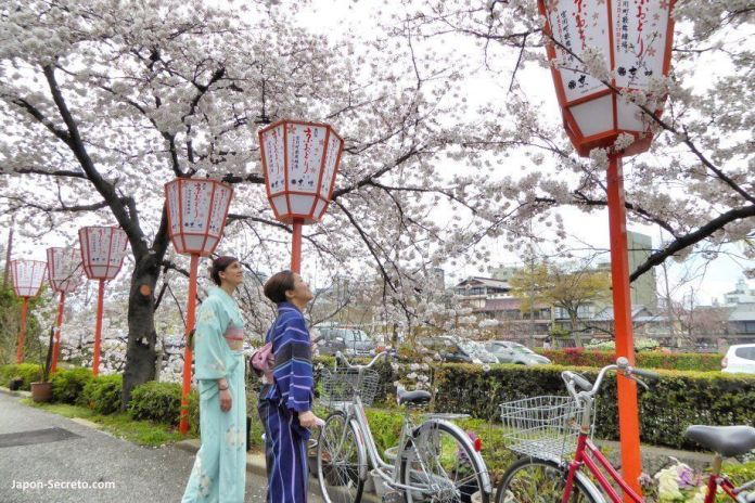 Pilar y Mana vestidas con kimono por el barrio de geishas de Miyagawachō en Kioto
