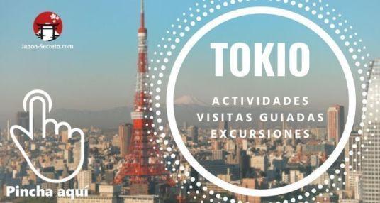 Descubre Tokio: visitas guiadas, actividades y excursiones