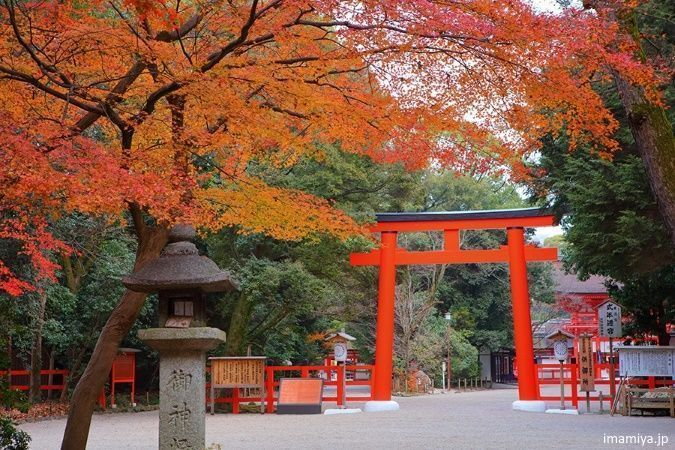 Japón: disfrutar del momiji en Kioto en otoño. Santuario Shimogamo
