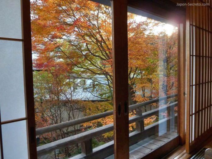 Vistas desde nuestra habitación en Kusatsu Hotel (Kusatsu Onsen) durante el otoño. Puede disfrutarse del momiji (colores de los árboles en otoño).