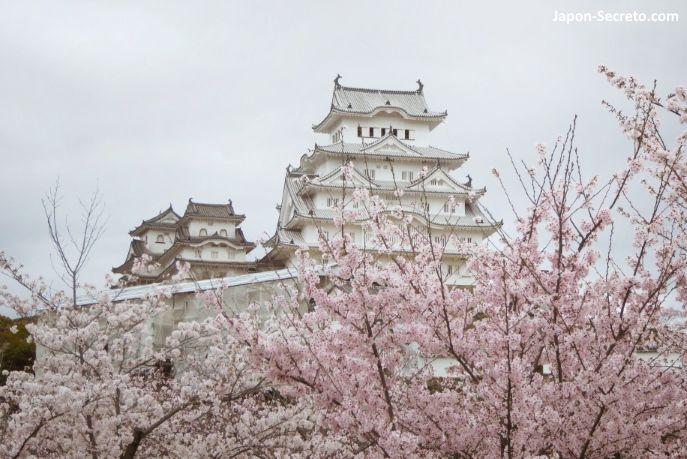 Viajar a Japón: castillo de Himeji (姫路城) durante la floración de cerezos sakura. Un buen viaje desde Kioto, Osaka o Hiroshima