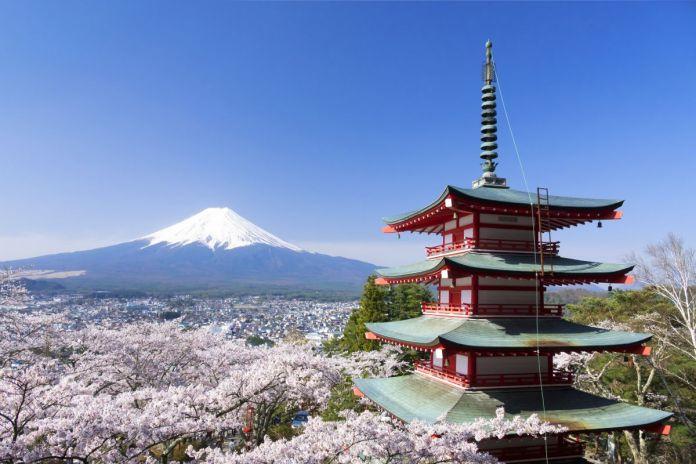 Excursión para ver los cerezos en flor en el Fuji. Yamanashi. Pagoda Chureito
