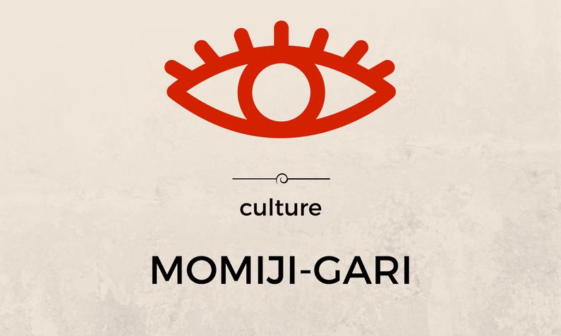 Momiji-gari