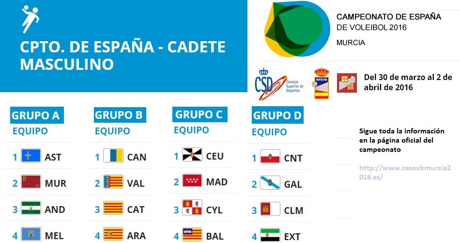 Campeonato de España - Voleibol Cadete Masculino
