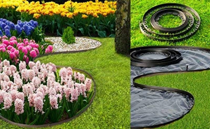 pelouse parterre de fleurs decoratif