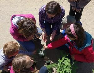 Hortithérapie - atelier de jardinage - Semaine du bien-etre a Saint-Peray (07)