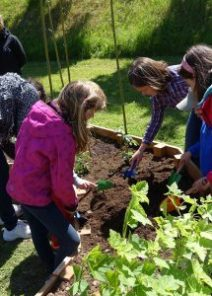 hetre-atelier-potager-fleur-plantation