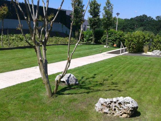 Mantenimiento de jardines en Donostialdea