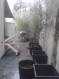 jardinería-decoracion-20140604_111641