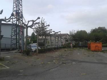 mantenimiento-jardin-empresa-20141010_181600