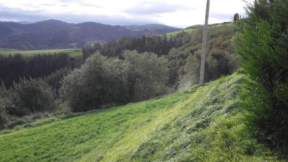 aia talud 1