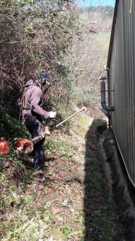 mantenimiento de jardineria para empresas