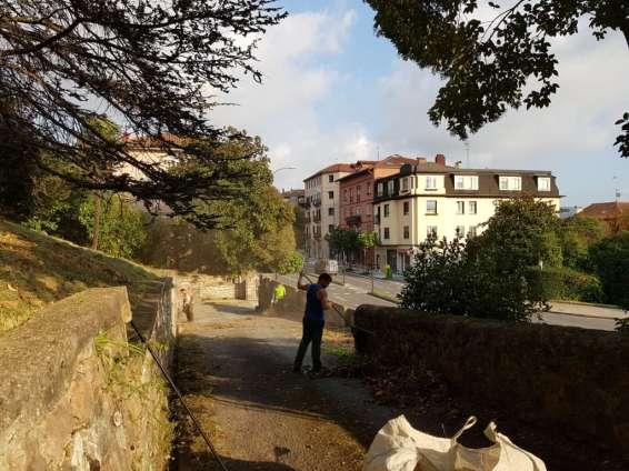 Jardineria en Donostialdea