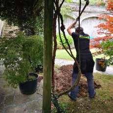 Jardineritza lanak Donostian
