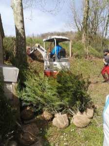 reforma-de-cercado-y-plantacion-camping