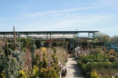 Jardinerie Perigny Garden - Passion jarin depuis 1974