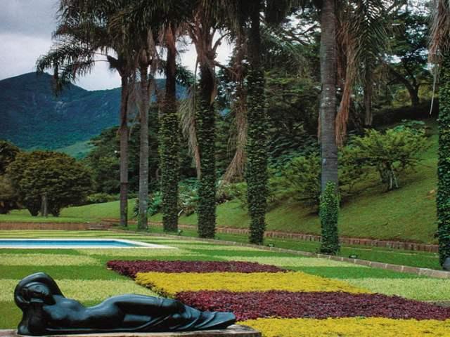Burle Marx, el pionero de la flora brasileña