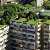 Naturación de cubiertas, techos y azoteas ajardinadas