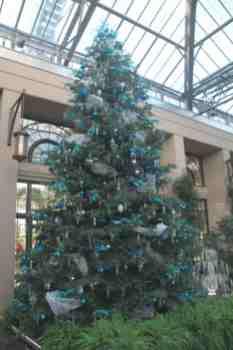 Épinette bleue décorée