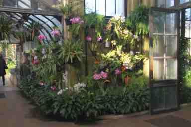 Serre des orchidées