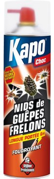 Insecticide anti-guêpe.