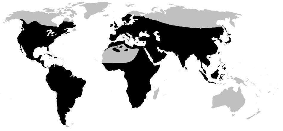 20181028B Tnarg 123345, Wikipedia