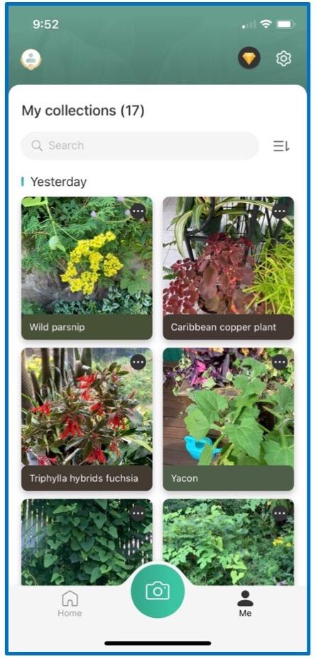 Saisi d'écran de PictureThis montrant différentes plantes.