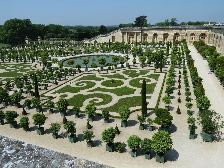 Agrumes en bac devant l'orangerie de Versailles.