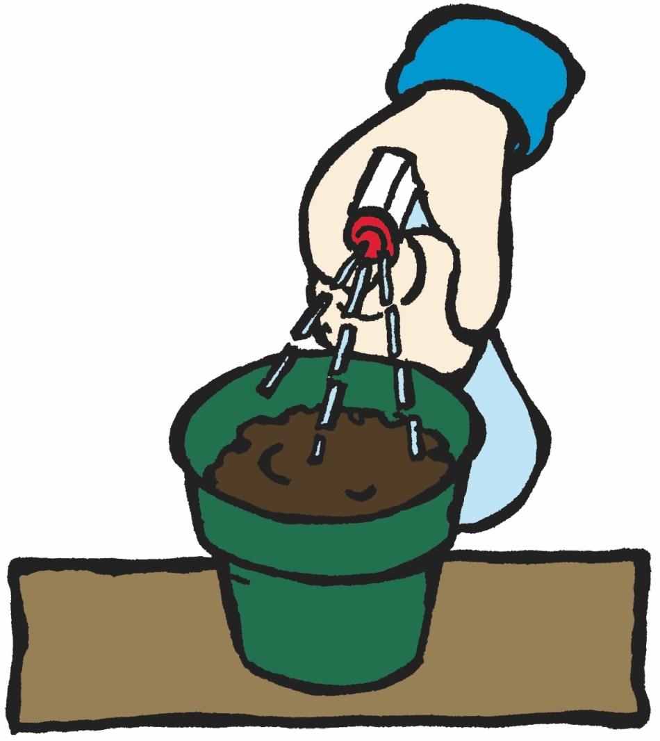 Vaporisation du terreau après le semis.