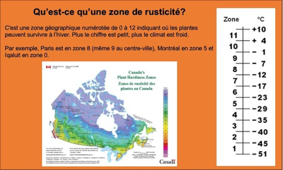 Insertion montrant les zones de rusticité et comparant les températures pour chaque zone.