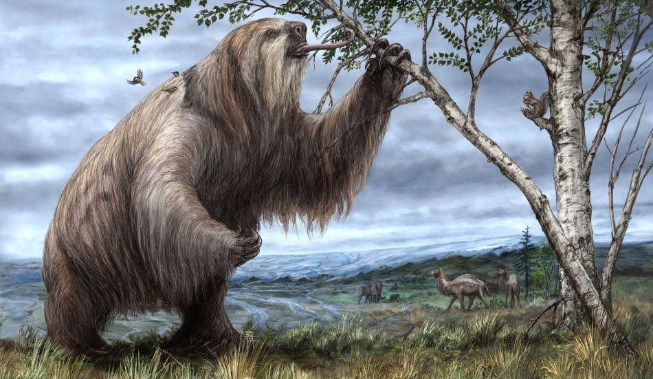 Illustration de paresseux géant