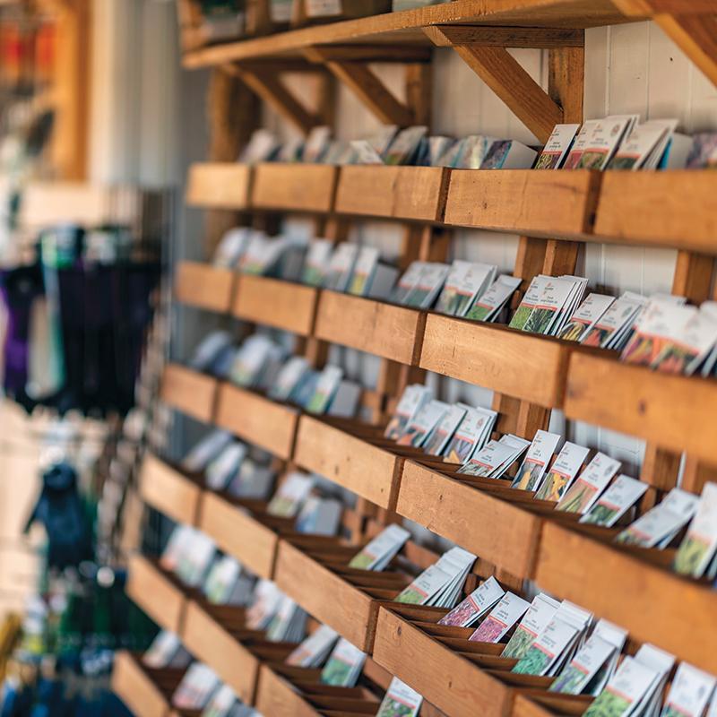 Étalage de semences dans un magasin.