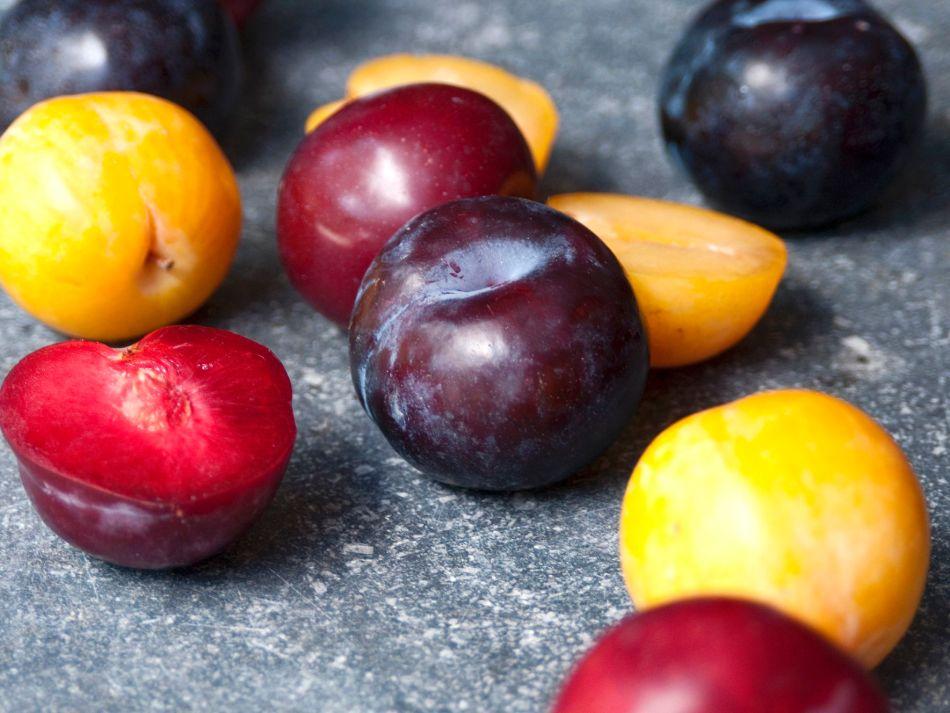 Différentes variétés et couleurs de prune.