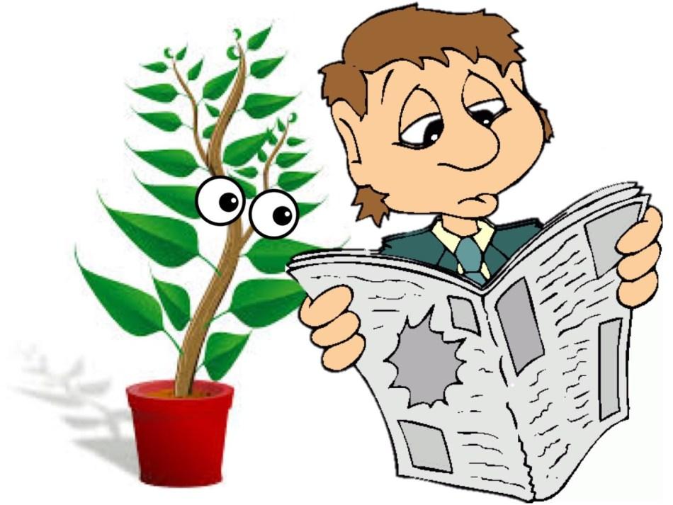 Homme lisant un journal tout en étant observé par une plante d'intérieur curieuse.