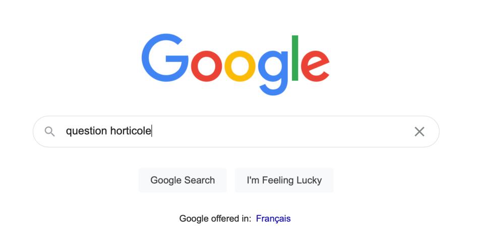 Moteur de recherche Google.