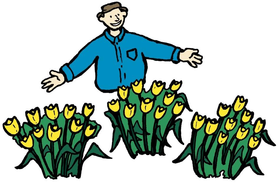 Illustration d'un homme qui montre comment planter par taches de couleur.