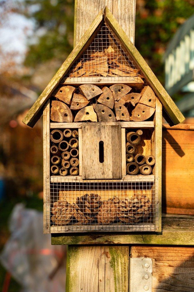 Hôtel pour les mégachiles et les abeilles maçonnes.