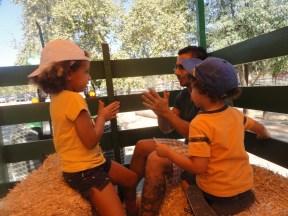 hay ride 2
