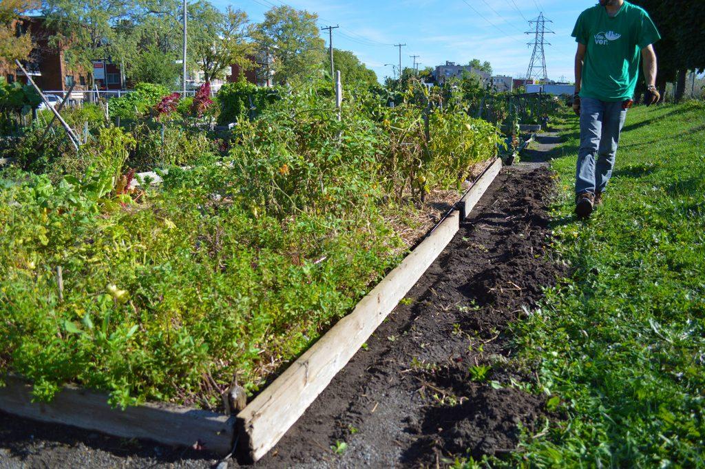 jardins communautaires ahuntsic cartierville