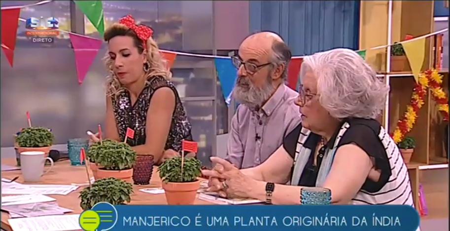 Jardins Sintra no ALÔ PORTUGAL