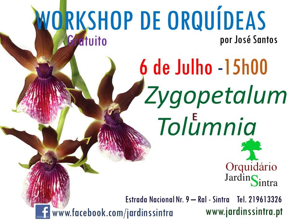 Workshop de Orquídeas