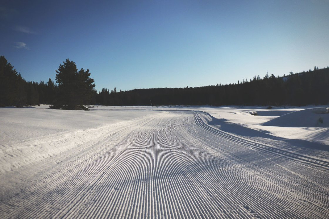 Skate lane at a groomed cross country ski area